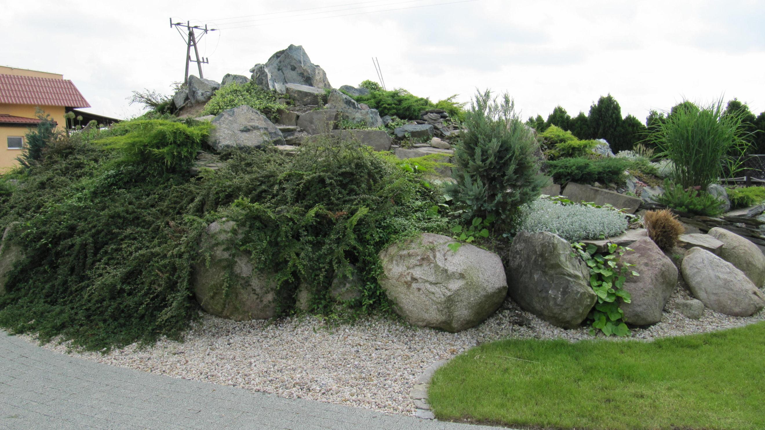 Giardino roccioso con piante aromatiche for Giardino roccioso